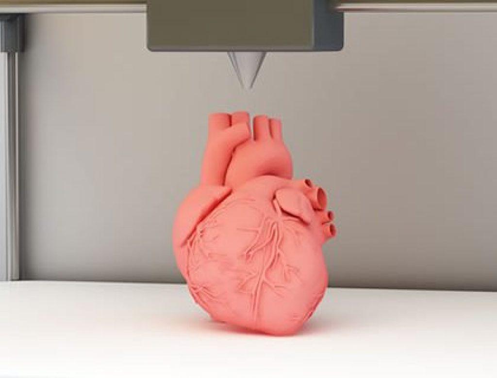 3D Printer for BIO Printing