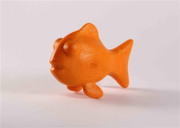 3d printing fish model