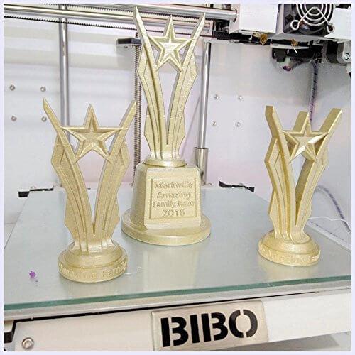 Bibo Dual Extruder print quality (1)