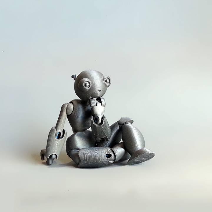 Posable Robot